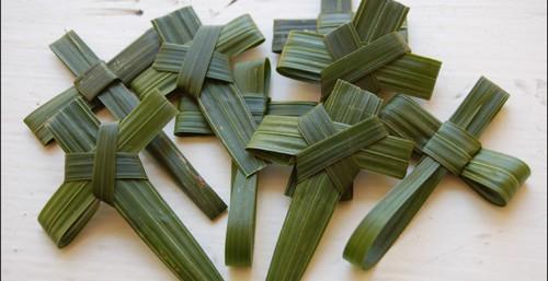 palm-crosses